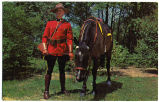 (Mountie leading horse)